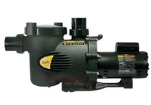 Jandy Stealth Energy Efficient Pump 2.0HP 2-Speed SHPF2.0-2