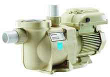 Pentair Pool Pump SuperFlo VS Variable Speed 342001